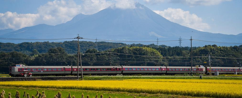 日本稻田丰收季