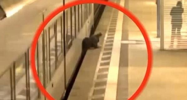 惊险一刻!德男子被卡行驶火车与站台间奇迹生还