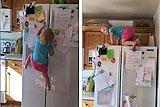 美两岁女童徒手爬上冰箱顶