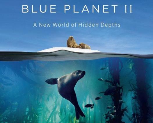 腾讯与BBC Worldwide签署合作《蓝色星球2》协议