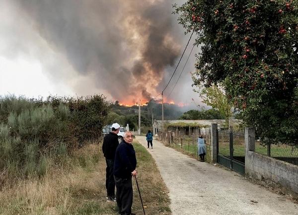 葡萄牙西班牙森林大火死伤惨重或人为所致