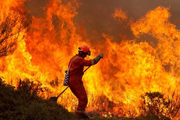 葡萄牙西班牙两国森林大火持续 至少39人死亡