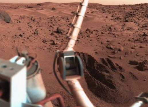 百年内世界会怎样?登陆火星/AI进化/鸟消失