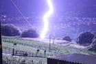 闪电险击牧场马群被吓坏