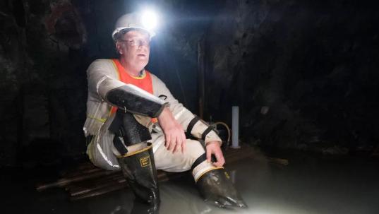 """研究人员在金矿深处发现""""恶魔蠕虫"""""""