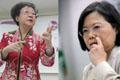"""蔡英文为何不嫁人?绿委辩称""""为了台湾未来"""""""