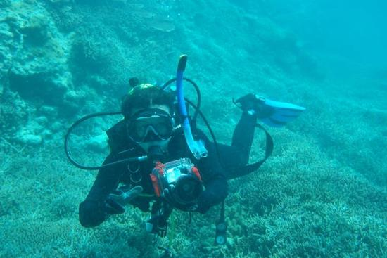 中国科学家在南海种珊瑚:成功种植约十万平方米