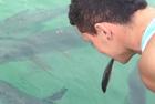 少年叼小鱼喂鱼遭鸟打劫