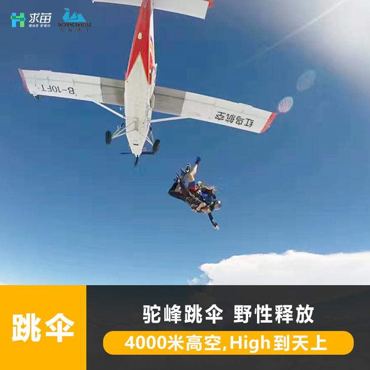 4000米高空跳伞野性释放 环球网求苗布局极限运动