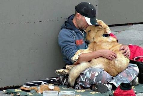 狗狗是我们最好的朋友