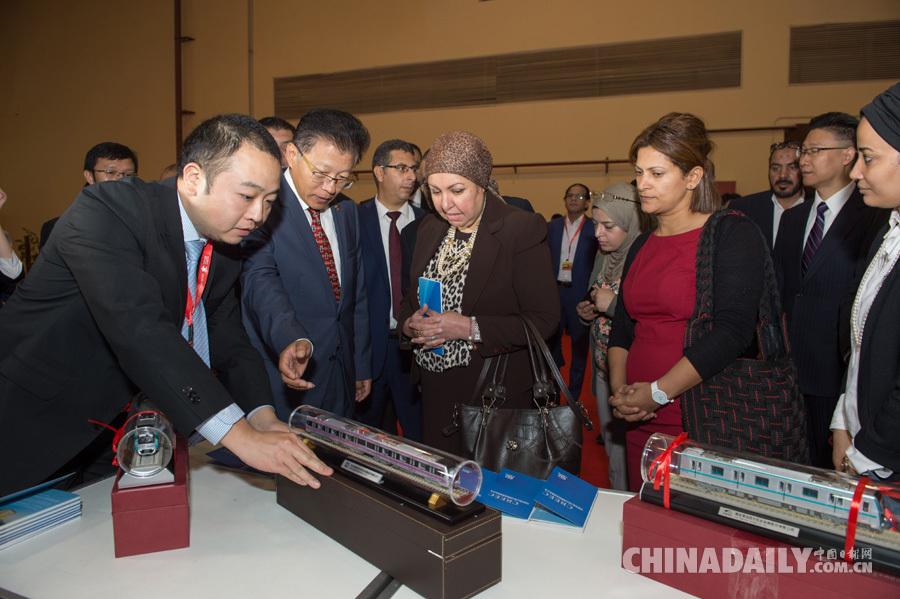 埃及投资总局局长:期待吸引更多中国投资