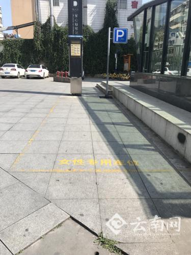 """昆明现女性专用停车位 专家建议改名""""新手停车位"""""""