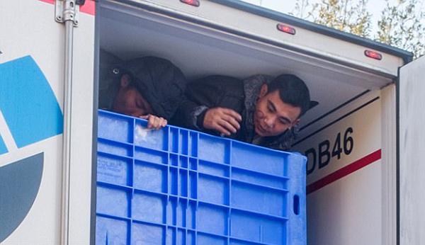 英国警方在一卡车中查出10名越南非法移民