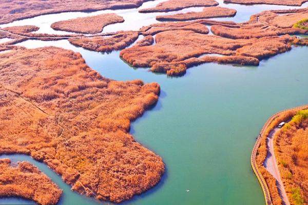 航拍甘肃张掖国家湿地公园
