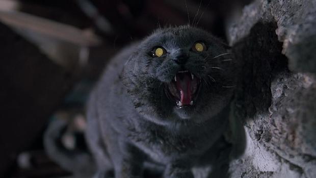 斯蒂芬金旧作《宠物坟场》被翻拍