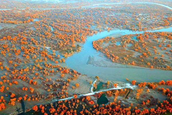 塔里木的秋天