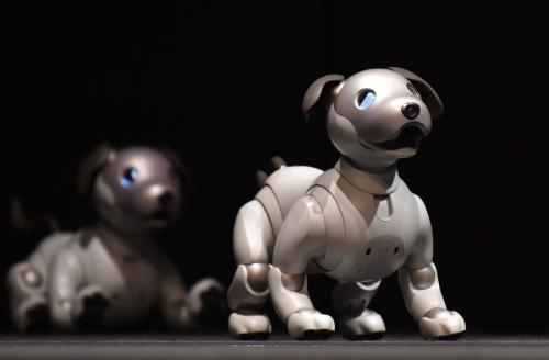 神奇!日本发布新款机器狗 可与人心灵相通