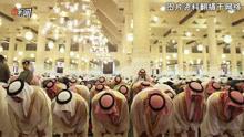 沙特反腐风暴1晚逮捕11王子 揭王子们有何权利
