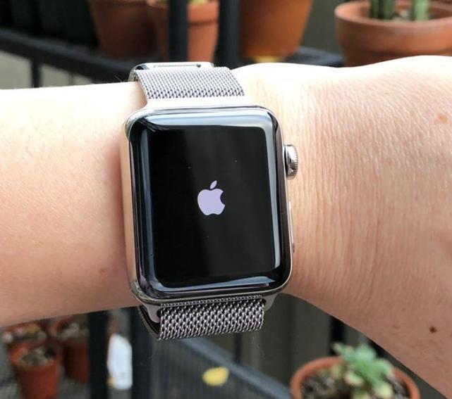 Apple Watch现新Bug:一问Siri天气就崩溃
