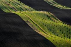 捷克摩拉维亚田园风光 令人惊叹