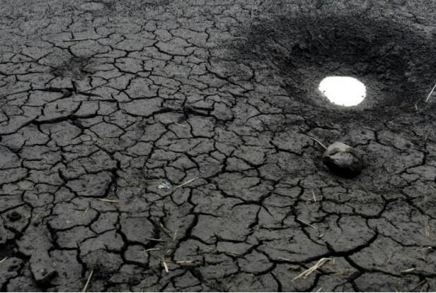 世界气象组织:2017或成史上最热非厄尔尼诺年
