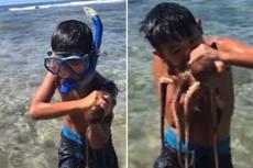 美国男子教10岁儿子如何咬死章鱼