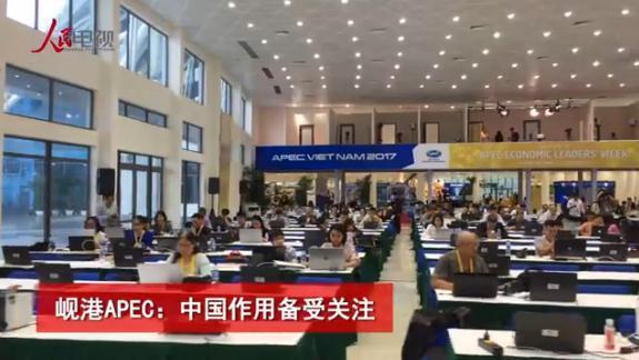 岘港APEC:中国作用备受关注