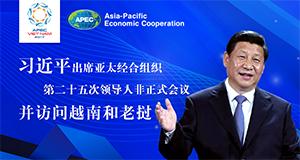 习近平出席2017年APEC越?#25103;?#20250;并访问越南和老挝