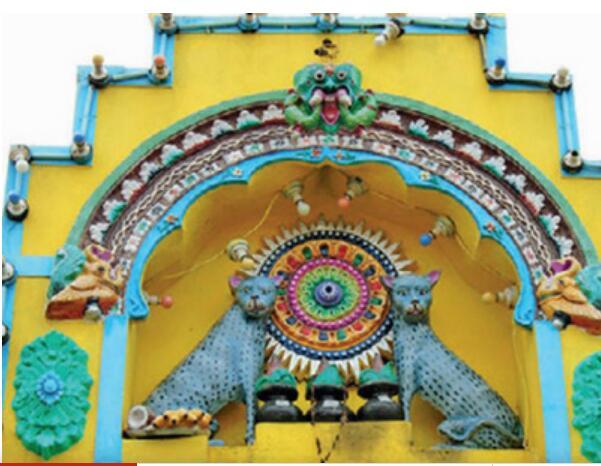 印一村庄将猫奉为神 当地有三座庙宇为猫而建