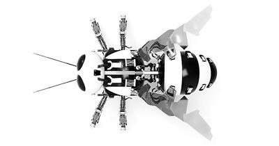 """飞行、潜水和游泳? 新型蜜蜂机器人""""升级换代"""""""