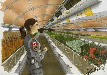 从播种到收获 未来农场将实现全自动化