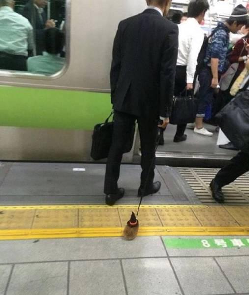 地铁里总有一些放飞自我的人图片