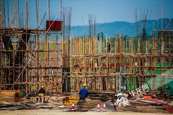 重庆国际木材商品交易中心落户综保区 由重庆交运集团投资25亿元打造