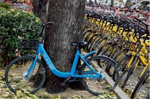 小蓝单车退押金难 共享单车押金第三方托管是真是假