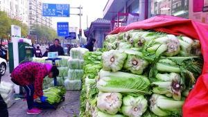 北京这家店大白菜日售1万3千斤 大葱连带卖5000斤