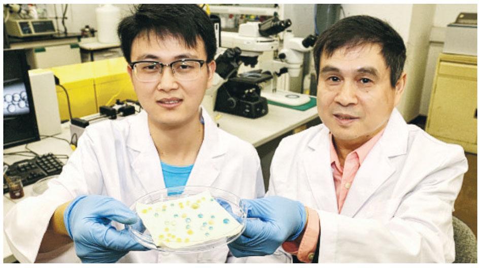 香港大学研发出防水防油物料 再不为洗衣服发愁