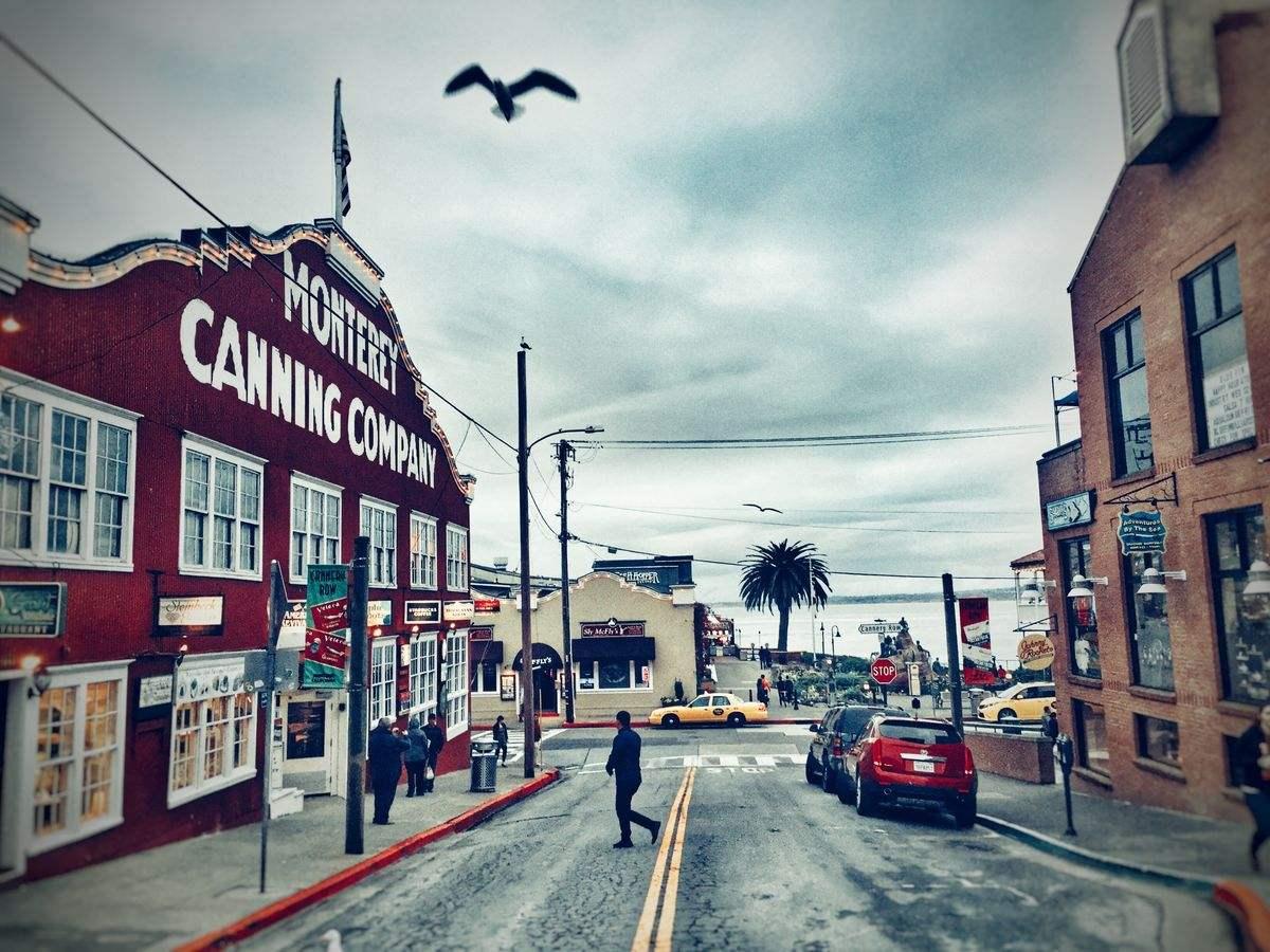 美国留学生数量呈下滑趋势 加州最受青睐