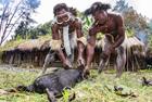 部落女人断指为丈夫陪葬