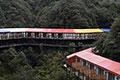 重庆现临崖酒店 色彩绚丽顺山形而建