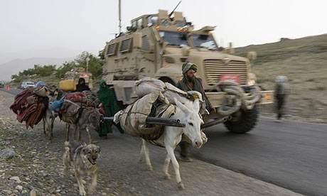 """劳木:阿富汗被称为""""帝国坟场"""",毛驴功不可没!"""