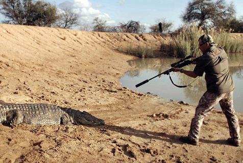 残忍!南非圈养濒危动物供猎手杀戮