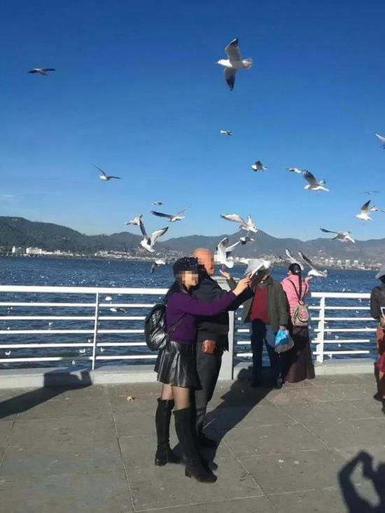 昆明5天现4起抓海鸥拍照事件 百余人上阵保护