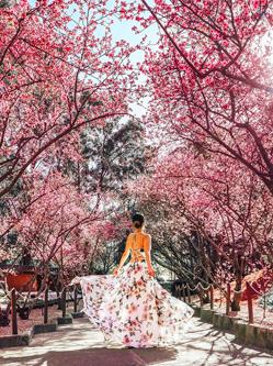 澳23岁女生环游世界拍精美照 圈粉无数
