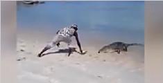 作死男徒手投喂野生鳄鱼