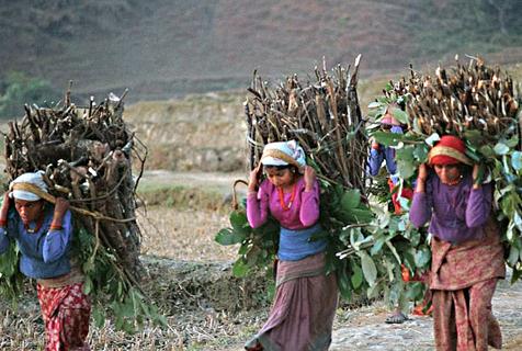80年代老照片展现昔日尼泊尔风情