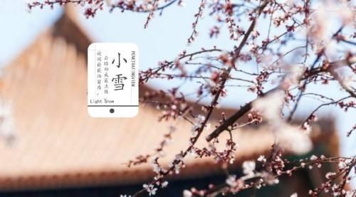 """小雪养生:常晒太阳顺七情 必吃暖身""""第一食物"""""""