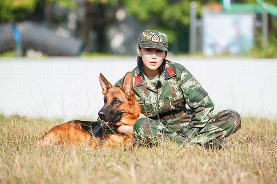 《奇兵神犬》测亲和力 杨烁张馨予最热搭档大PK