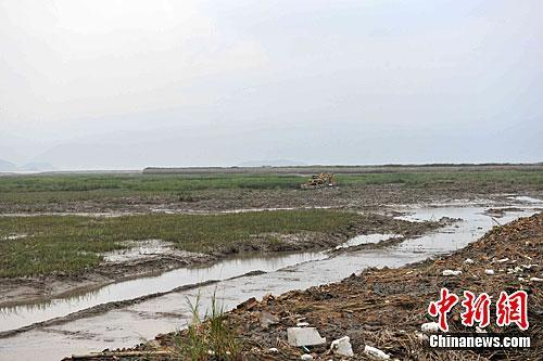 中国国家海洋局组建第二批督察组 重点督察围填海
