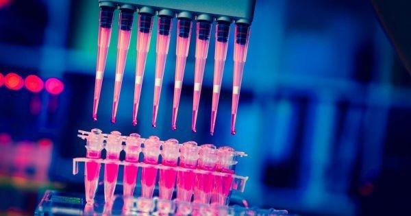 给力:科学家利用非免疫细胞来杀死癌细胞