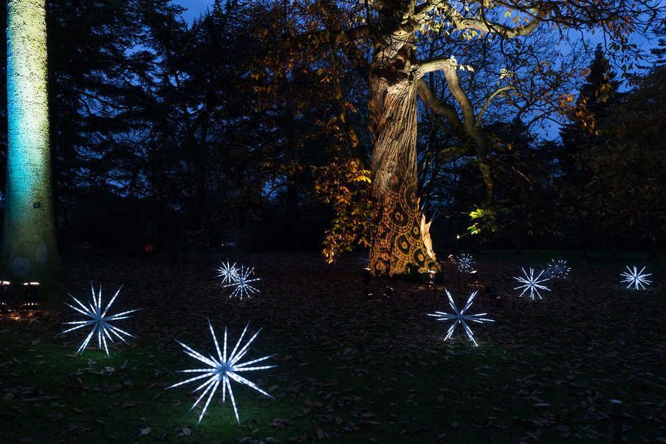 圣诞英国皇家植物园